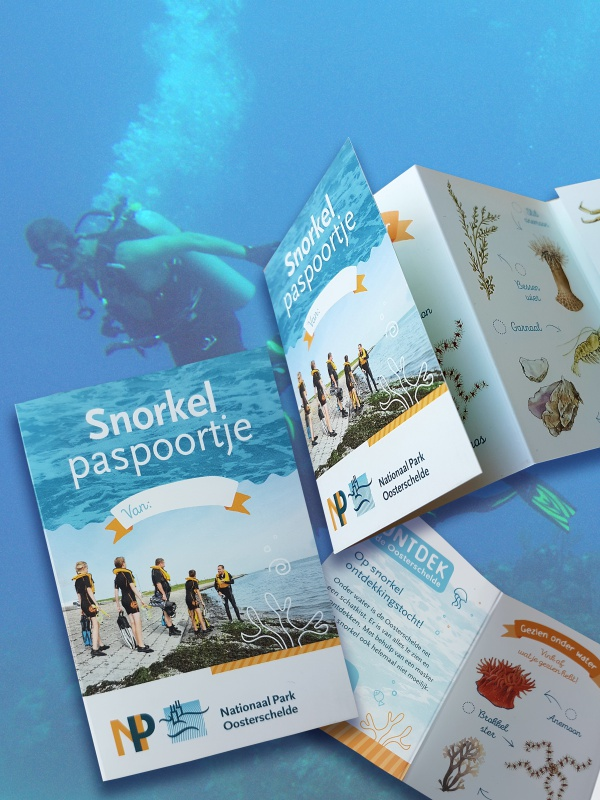 divers pasport